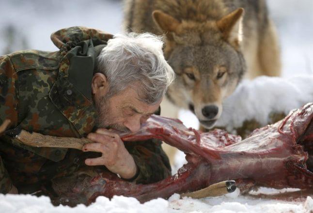 Mâncând cu lupul