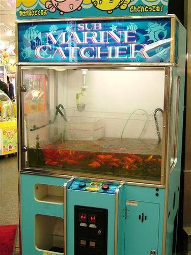 Automat homari