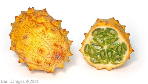 Fructe - Castravete african
