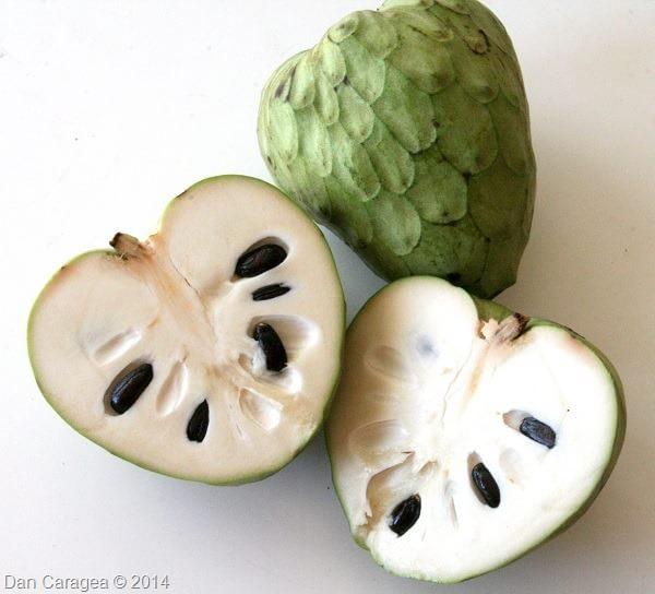 Fructe - Cherimoya