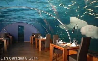 Restaurante unice - Restaurant subacvatic