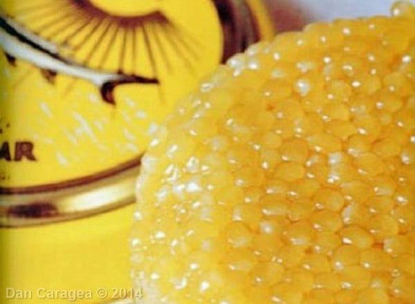 Cele mai scumpe substanțe - Caviar iranian