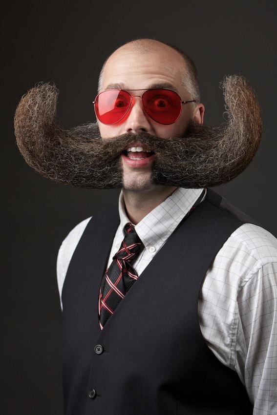 Campionatul de bărbi și mustăți - Mustață 1