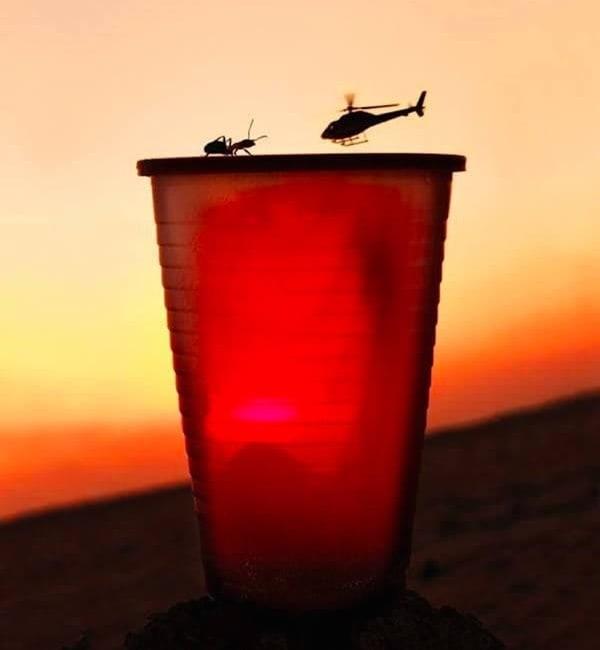 Furnica și elicopterul