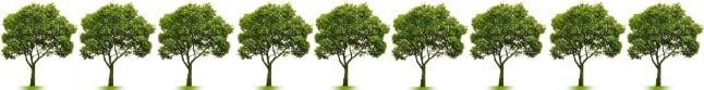 9 copaci