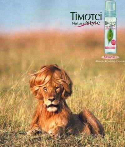 Postere publicitare - Timotei