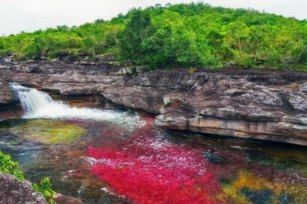 Râul în cinci culori
